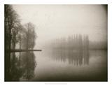 Trees in Fog III