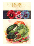 1898 Flower Vegetable Catalog