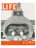 LIFE Bomber Taks Force 1942