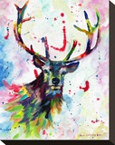Color Stag