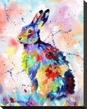 Color Hare