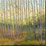 Vista Trees