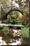 Japanese Bridge 2