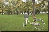 Japan Bicycle 21