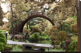 Japanese Bridge 1