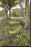 Japan Bicycle 2