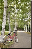 Japan Bicycle 20
