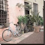 Liguria Bicycle 2