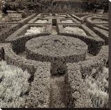 Tuscan Giardini 1