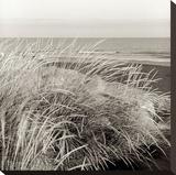 Tuscan Coast Dunes 3