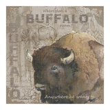 Where Does a Buffalo Roam Reproduction d'art par Anita Phillips