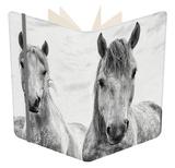 White Horses  Camargue  France