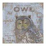 Where Does an Owl Hoot