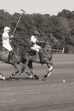 Polo In The Park IV