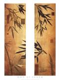 Bamboo Impressions II