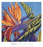 Birds of Paradise - Turquoise