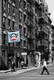 Safari CityPop Collection - Animal Kingdom in Manhattan