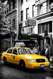 Safari CityPop Collection - NYC Union Square