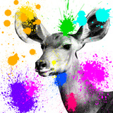 Safari Colors Pop Collection - Antelope Portrait II