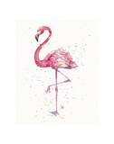 A Flamingo's Fancy