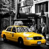 Safari CityPop Collection - NYC Union Square III