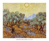 Olive Trees  1889