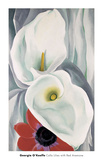 Calla Lilies with Red Anemone  1928
