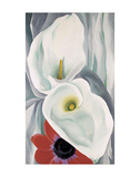 Calla Lilies with Red Anemone, 1928 Reproduction d'art par Georgia O'Keeffe
