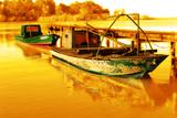 Boat IV