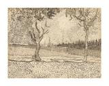 The Road to Tarascon  1888