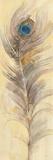 Blue Eyed Feathers III