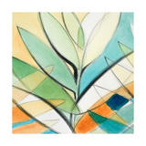 Palm Abstract II