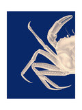 Contrasting Crab in Navy Blue a Reproduction d'art par Fab Funky