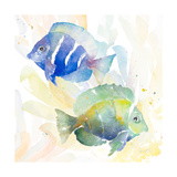 Tropical Fish Square IV