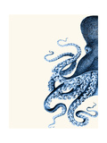 Octopus Navy Blue and Cream a Reproduction d'art par Fab Funky