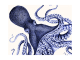 Landscape Blue Octopus Reproduction d'art par Fab Funky