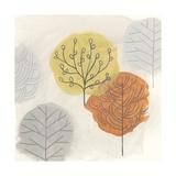 Forest Treasure II Reproduction d'art par June Vess