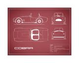 Cobra-Maroon