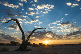Sunrise Landscape in Sossusvlei  Namibia  July 2014
