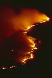 Mediterranean Forest Fire at Night  Spain