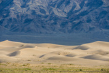 Khongor Sand Dunes  Govi Gurvan Saikhan National Park  Gobi Desert  South Mongolia June 2015