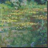 Le Bassin des Nympheas  1904