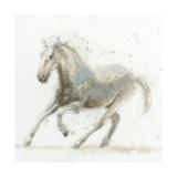 Stallion II
