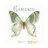 My Greenhouse Butterflies III