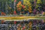 Autumn  Somes Pond  Somesville  Mount Desert Island  Maine  USA
