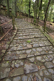 A Cobble Stone Path Leading Through the Grounds of Kasuga Taisha Shrine in Nara  Japan