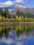 Colorado  Gunnison National Forest  Mount Owens