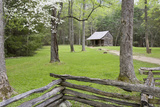Carter Shields Cabin in Spring  Cades Cove Area  Great Smoky Mountains National Park  Tennessee