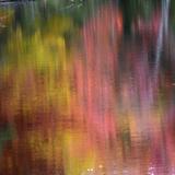 Autumn Reflections  Sheepscot River  Palermo  Maine  USA