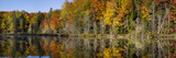 Fall Color at Small Lake or Pond Alger County in the Upper Peninsula  Michigan